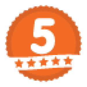 Five Star Service Icon